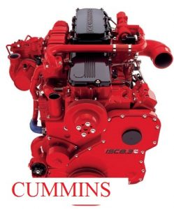 dong-co-cummins